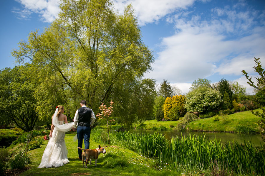 Elopement Packages dog friendly Millbrook